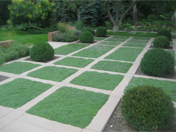 modern landscaping ideas for front yard