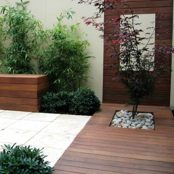 contemporary style plants