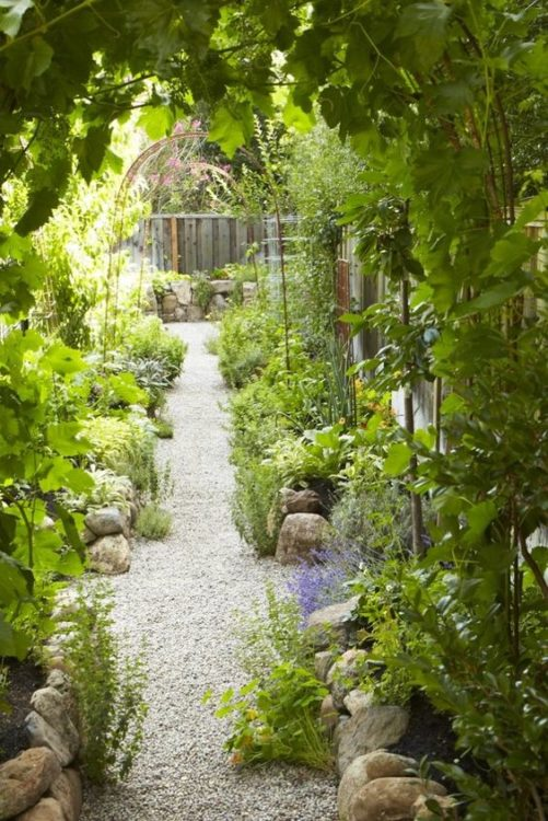 Edible Backyard Garden Landscape