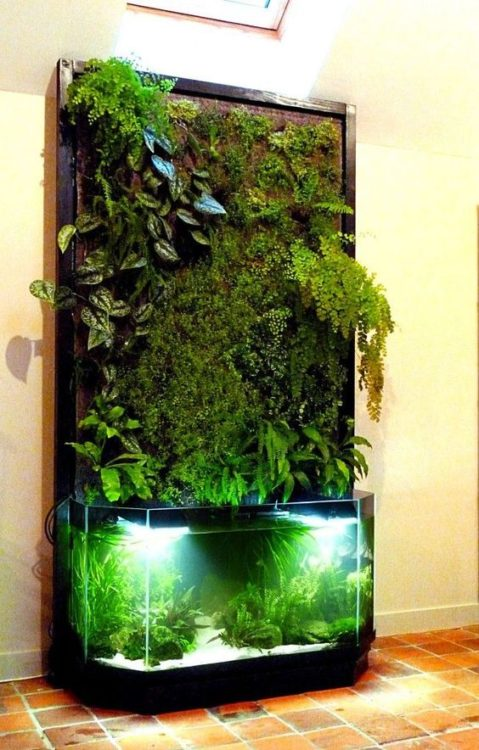 Exotic Aquascape Backyard Garden Design