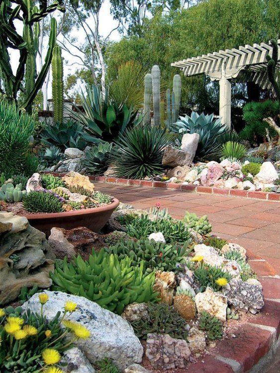 Exotic Mediterranean Backyard Garden Landscape