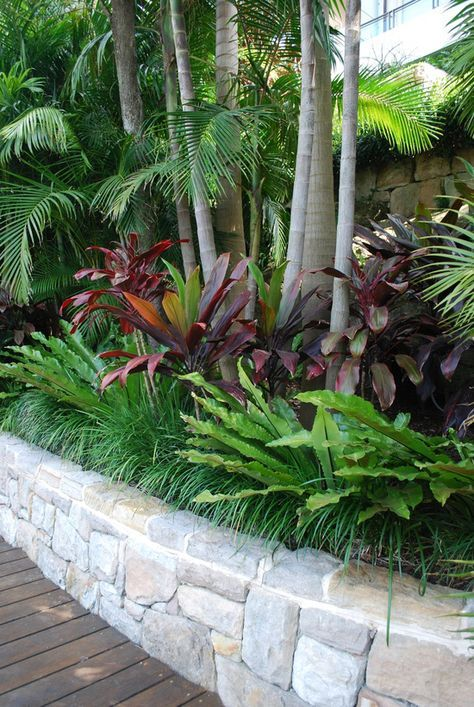 French Tropical Backyard Garden Landscape