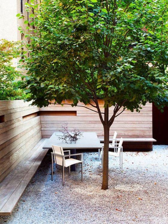 Minimal Backyard Garden Landscape