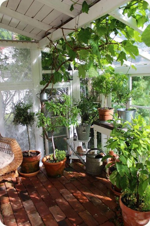 Scandinavian Backyard Garden Landscape