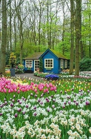 Small Cottage Flower Garden Design