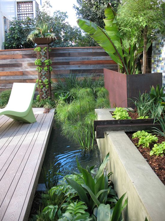 Tropical Contemporary Garden Landscape