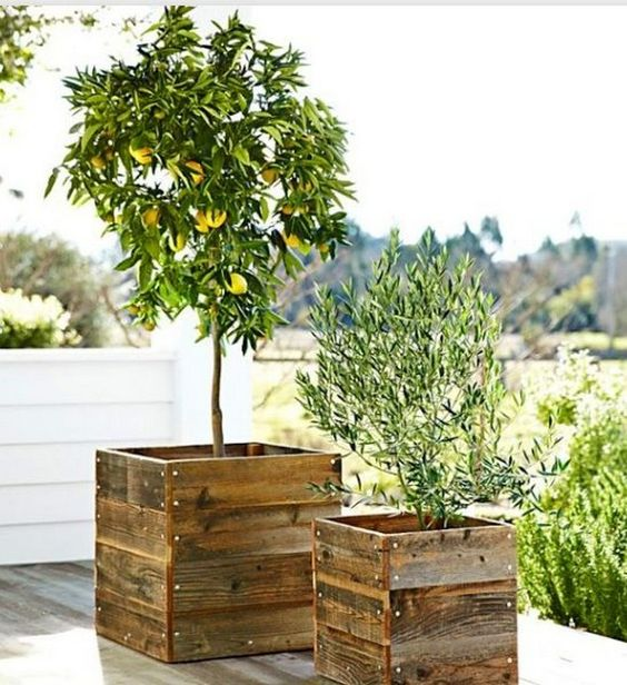 DIY Planter Wood Box
