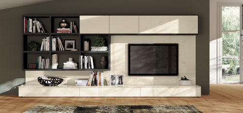 Entertainment Center with Versatility Stlyle