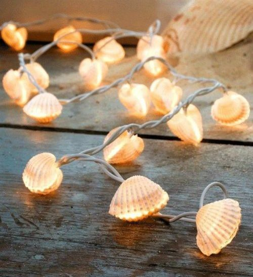 Sea Shell DIY String Light