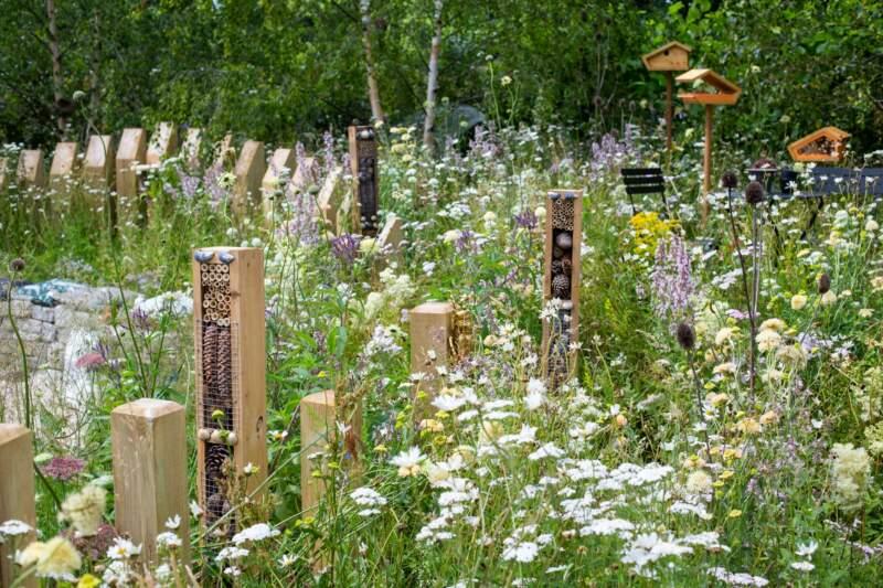 Wild Flower Garden Landscaping Concept