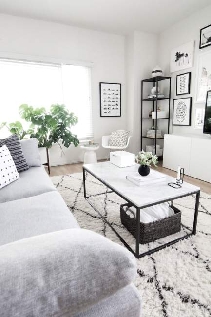 Natural Light Simple Apartment Decor