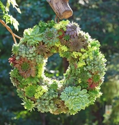 Circle Wreath Succulent Gardens
