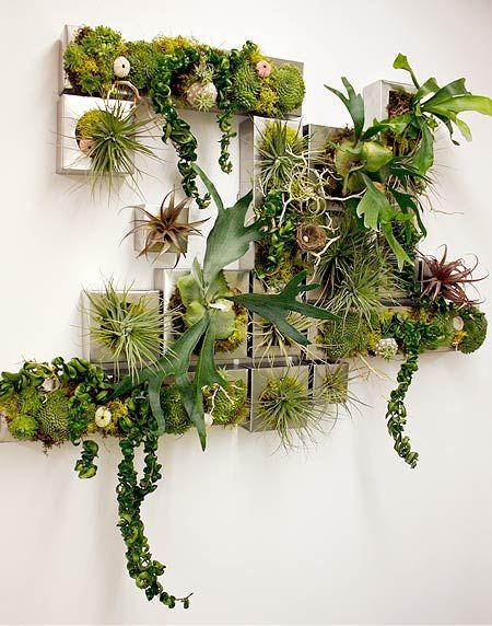 Mosaic Wall Succulent Gardens