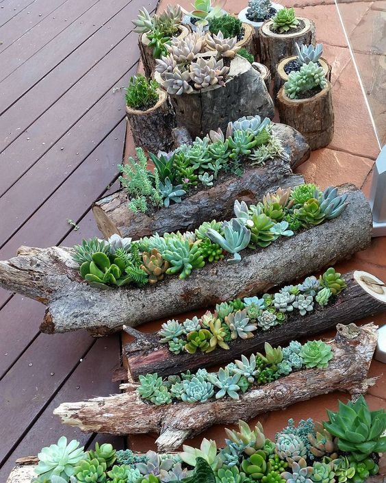 Wood Pot Succulent Gardens