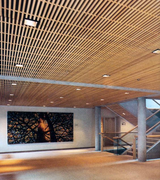 Long Wood Basement Ceiling Ideas
