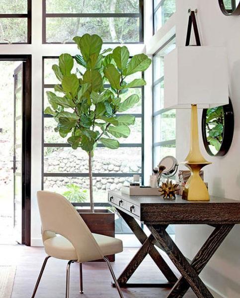 minimalist house interior design