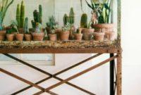 Cactus Planter for Indoor Garden Ideas 03 378x502 3