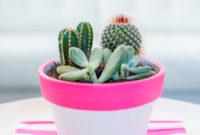 DIY pink cactus pot ideas