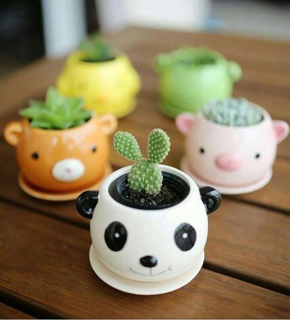 head animal cactus pot design 1